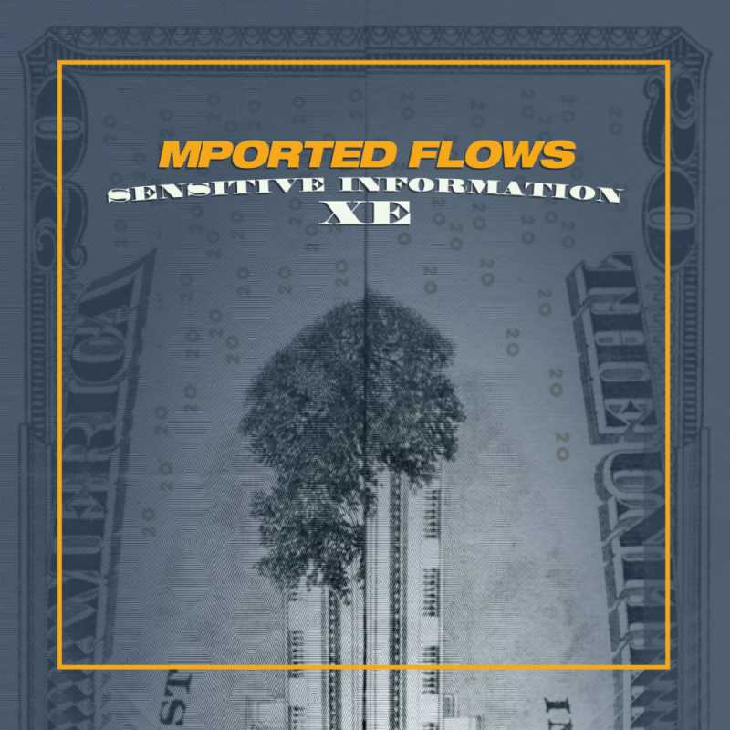 Mported Flows - Sensitive Information XE