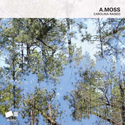 "Cover of ""Carolina Raised"" by A.Moss"