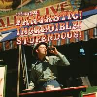 Various Artists - netBloc Volume 29 (Fantastic! Incredible! Stupendous!)