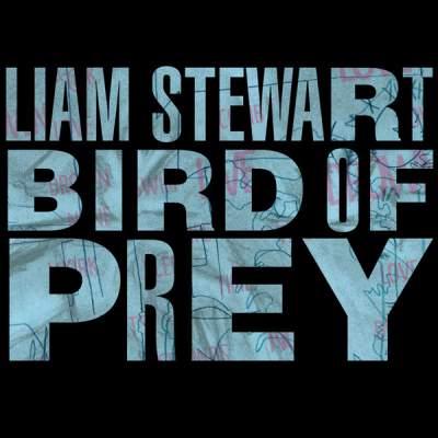 Liam Stewart - Bird Of Prey