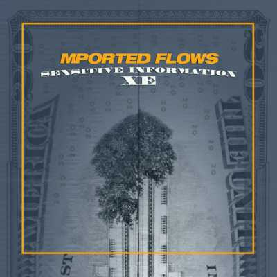 "Cover of ""Sensitive Information XE"" by Mported Flows"